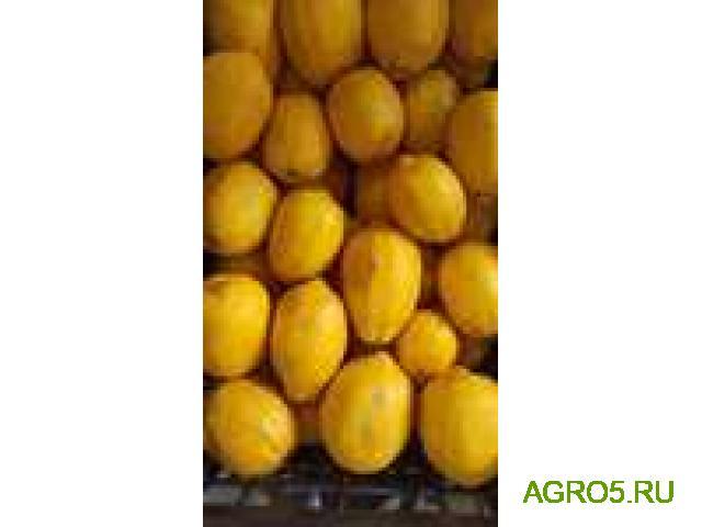 Лимоны от производителя