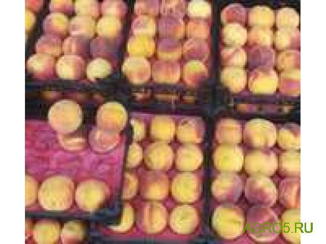 Персики от производителя