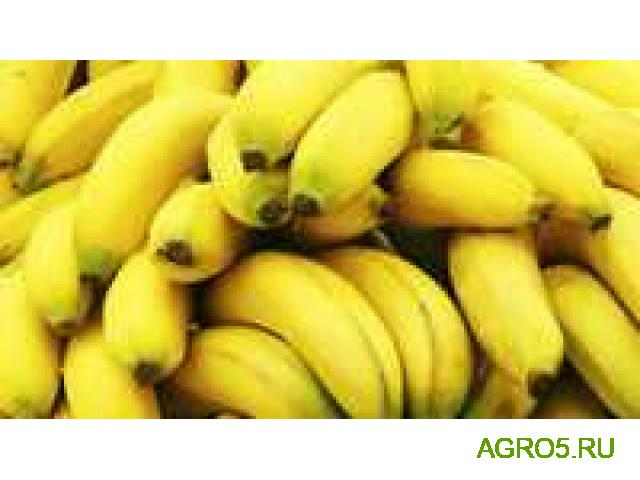 Бананы свежий