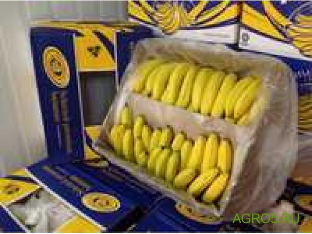 Бананы сезон 2020