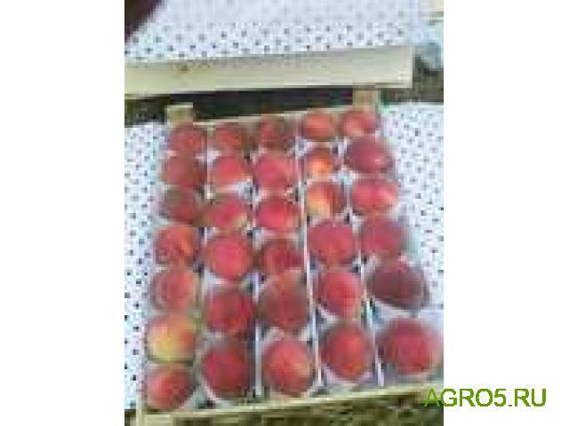 Персики продам