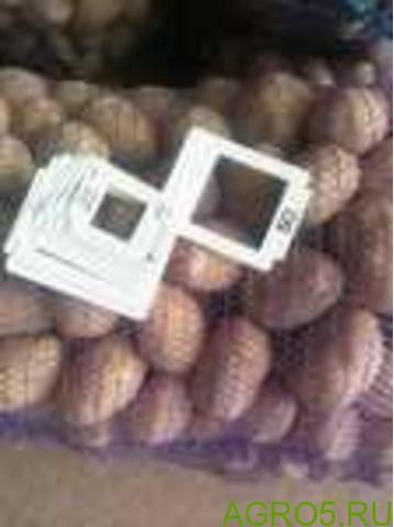 Картофель в Бахчисарае