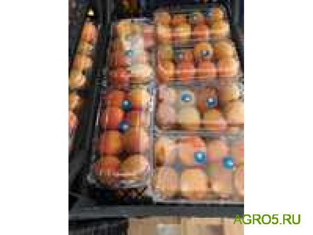 свежий абрикос шалох