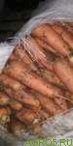Морковь в Азове