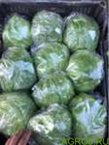 Зелень в Турции