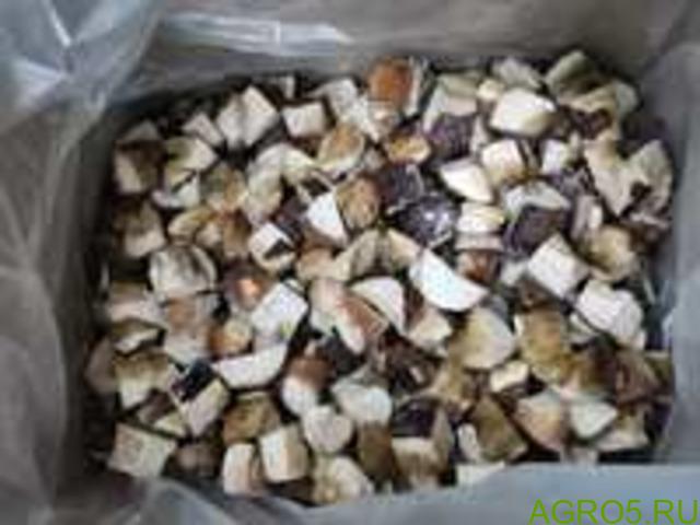 Белый гриб кубик