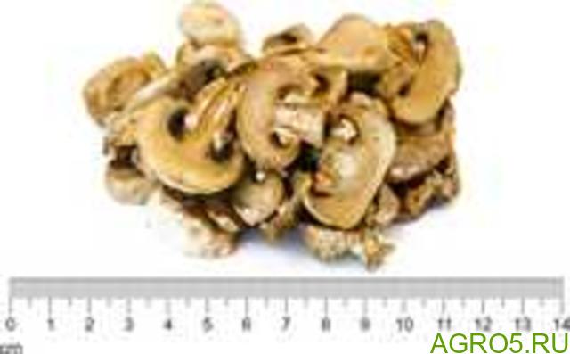 Грибы Шампиньоны сушеные (слайсы, кусочки, порошок) (НЕ КИТАЙ)