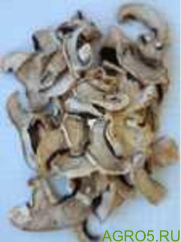 Грибы шампиньоны сушеные