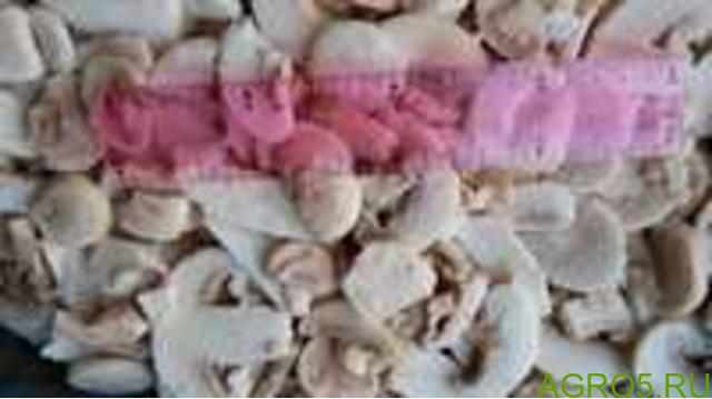 Шампиньоны замороженные оптом в ОптХолод