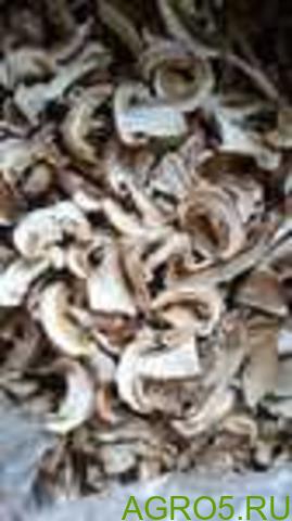 Сушеный белый гриб в наличии в Москве. Первый и третий сорт. Без предоплаты