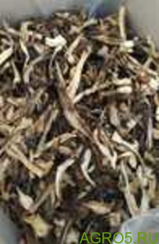 Подосиновики сушеные грибы