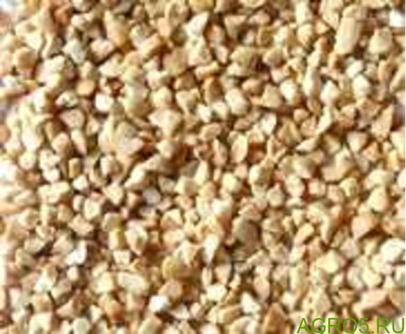 Продам орех фундук в скорлупе, калибр 18-24 отличного качества, обьем 7 т. Отгрузка г Сочи