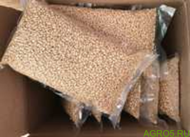 Ядро кедрового ореха сибирского