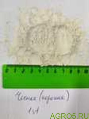 Чеснок сушеный порошок