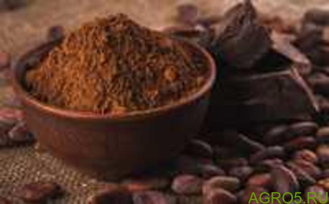 Какао-порошок натуральный (Малайзия),Какао-порошок алкализованный (Испания)