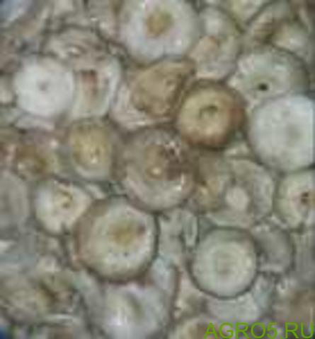 Грузди боровые солено-отварные