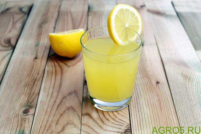 Сок лимона (порошок, концентрированный),также сок различных ягод, например клюква, облепиха, черника