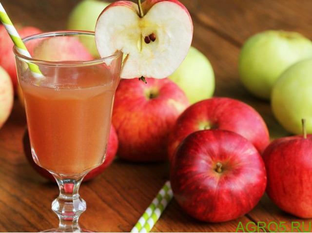 Продам сок натуральный свежевыжатый 1 т в день, яблочный, апельсиновый, виноградный в Москве