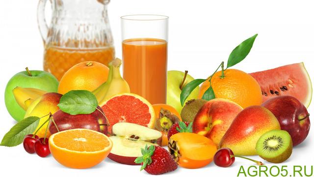 Концентрированные фруктово-ягодные соки, асептика