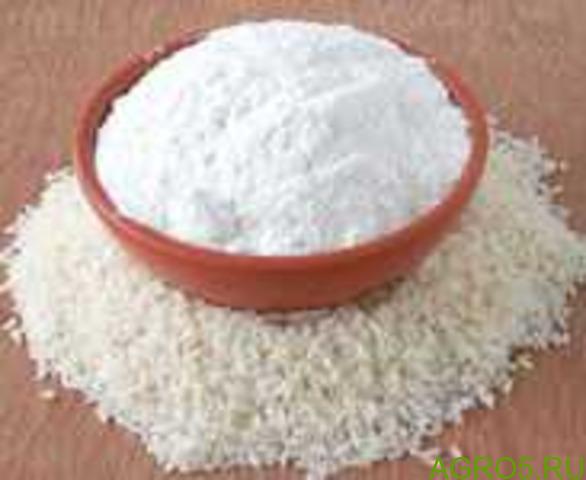 Рисовый белок (протеин) Италия