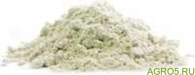 Кунжутный концентрат белка 55% (кунжутный протеин)