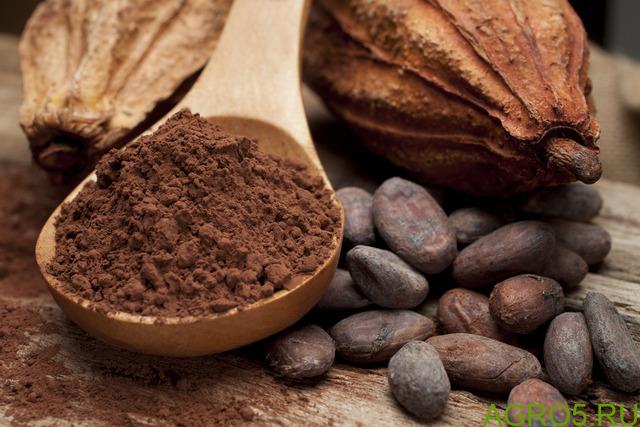 Какао, порошок натуральный, 1 кг