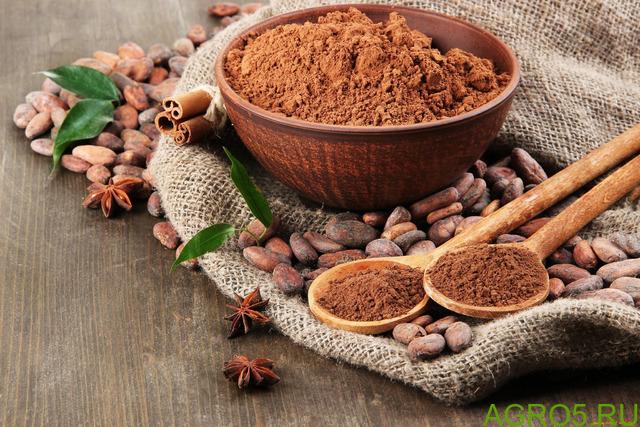 Какао-тертое