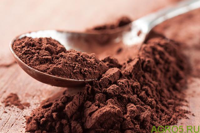 Какао - порошок натуральный / алкализованный.