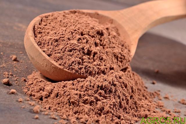 Какао-порошок натуральный (Малайзия)