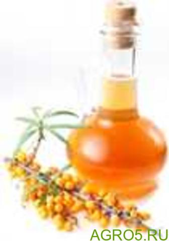 Масло облепиховое (канистра 5л.) 50 каротеноидов
