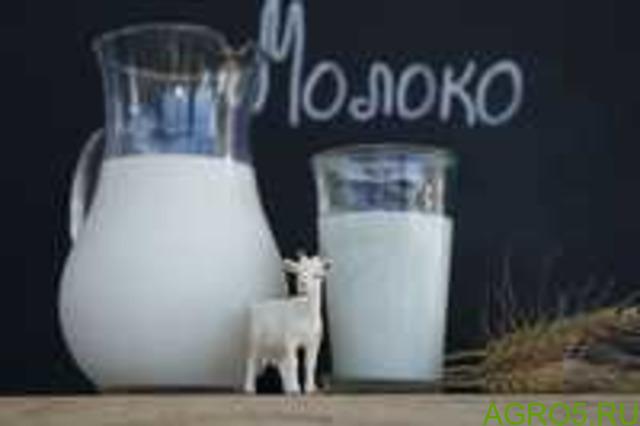 Козье молоко оптом