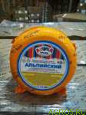 Сыр Новатор