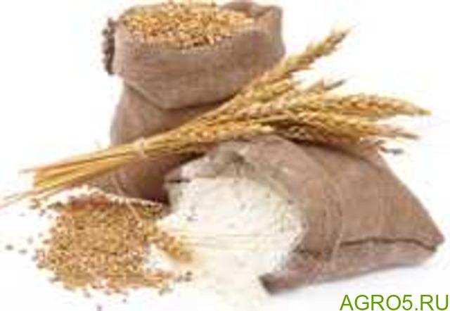 Мука пшеничная в/с, 1/с