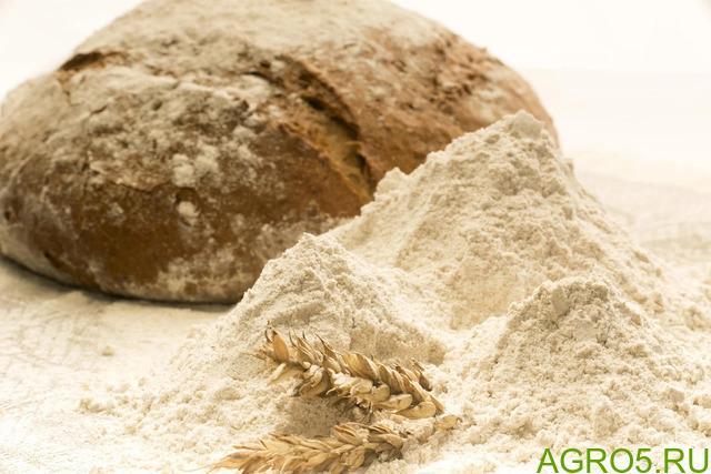 Мука пшеничная. Flour. Кредитование экспорта