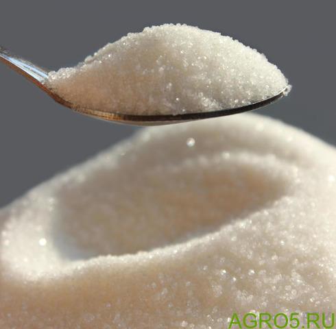 Сахар Белый
