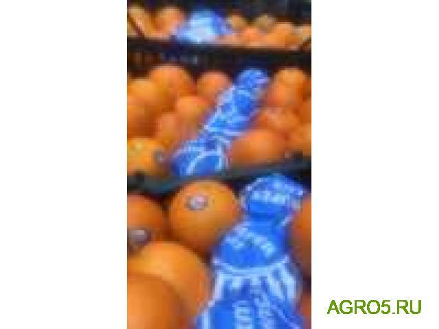Апельсины на сок