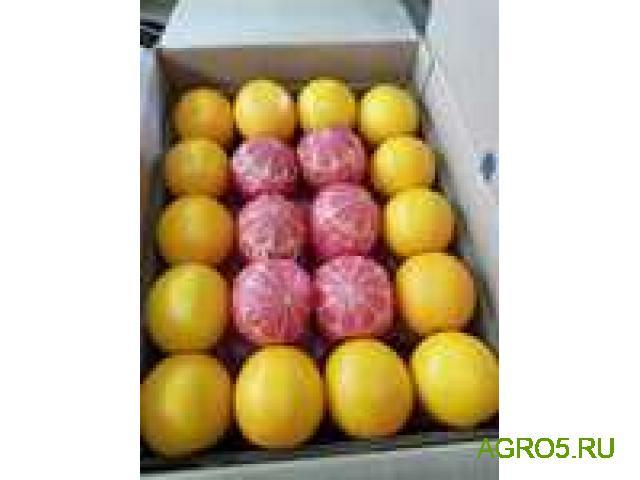 Апельсины Валенсия высокого качества