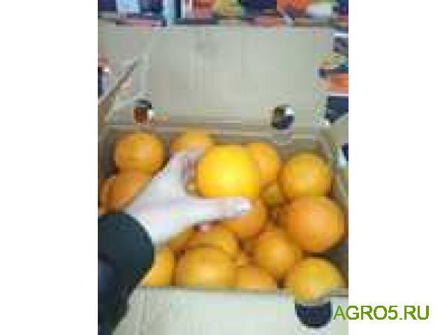 Апельсины из Турции оптом