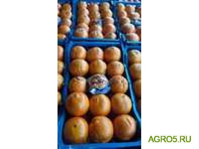 Апельсины из Турции высокого качества