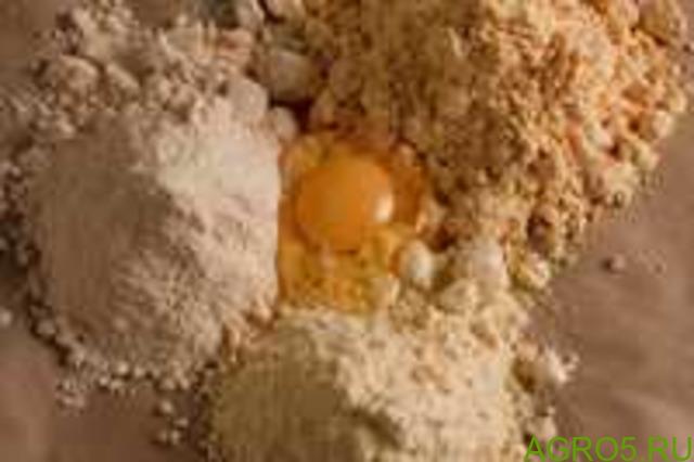 Яичный порошок (сухой меланж)