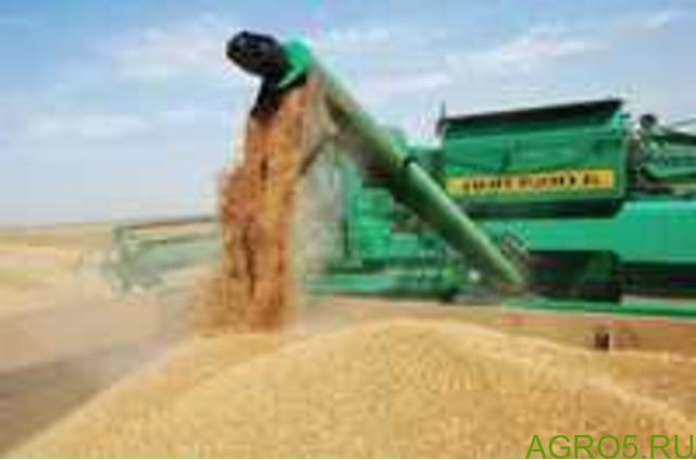Отгружаем пшеницу 3,4 класса с элеваторов Краснодарского края