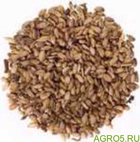 Расторопша, семена, 1 кг