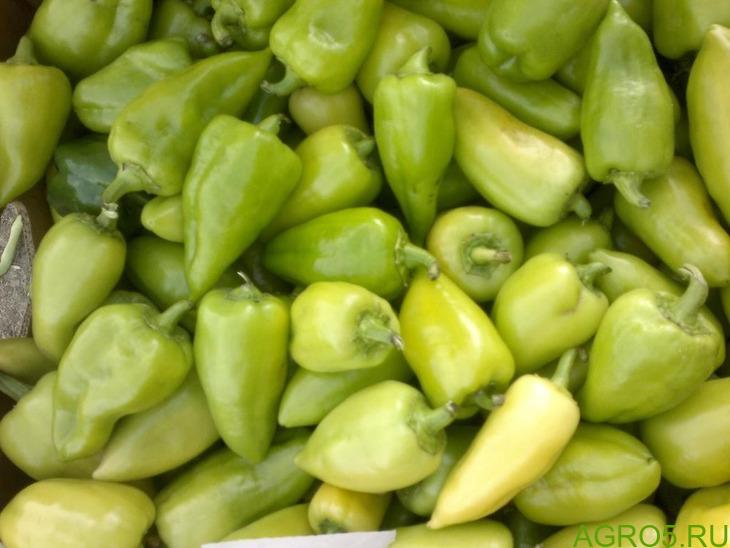Перец грунтовой свежий