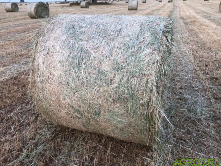 Пшеничная солома
