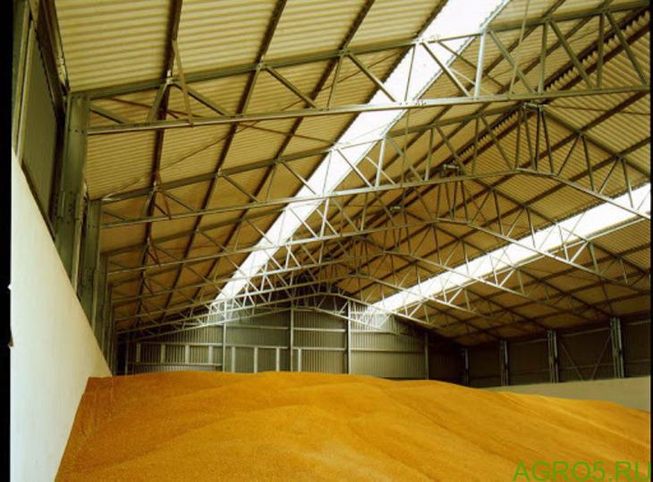 Пшеница оптом от производителя 4 класс