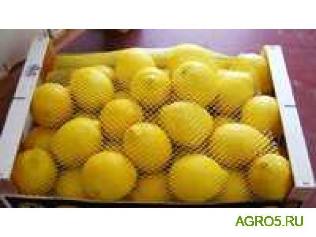 Лимоны свежий