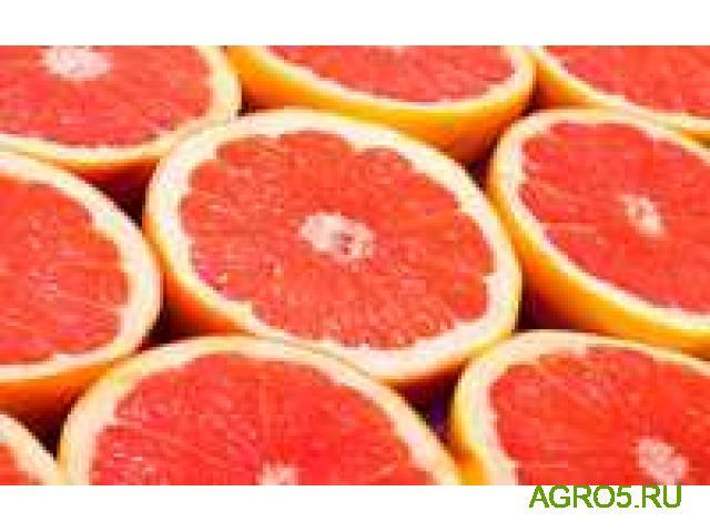 Грейпфрут оптом