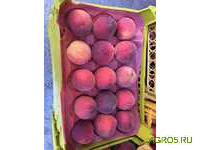 Персики новый урожай