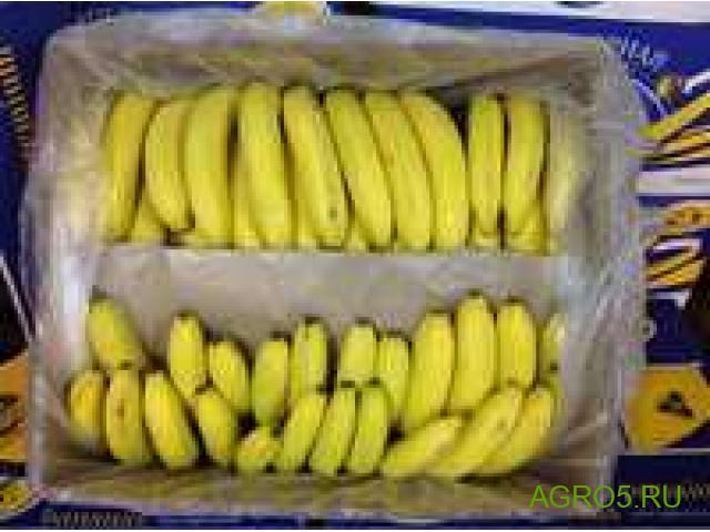 Бананы оптом