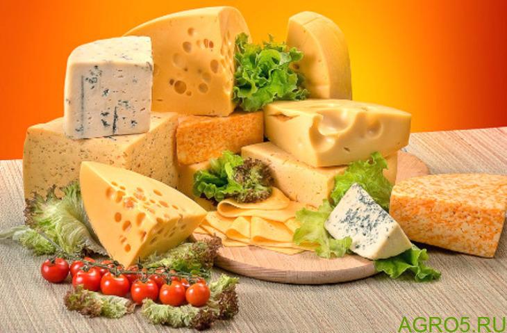 Оптом Сыр и масло